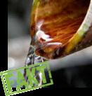 Ftalany nie są wypłukiwane z pcw do środowiska naturalnego, powietrza,wody, gleby